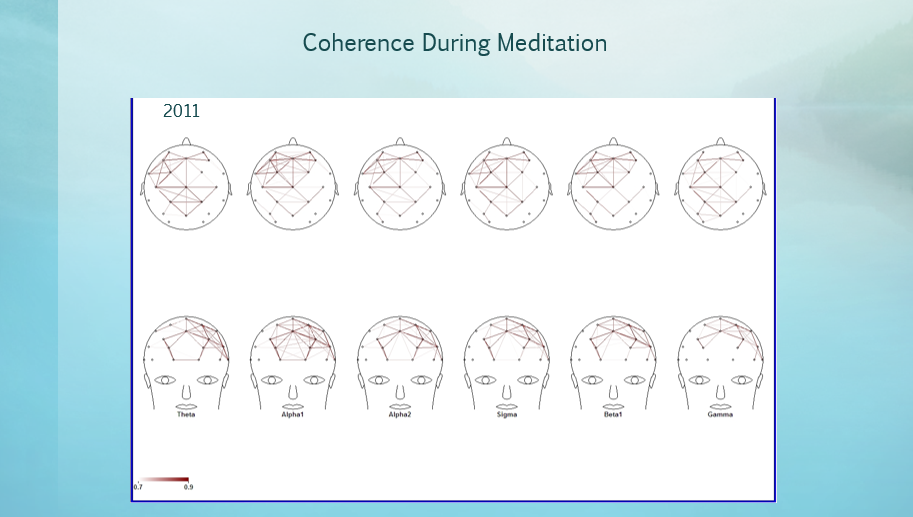 Coherence During Meditation 2011