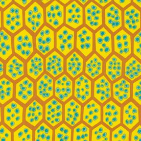 Brandon Mably : Pomegranate in Yellow : Free Spirit