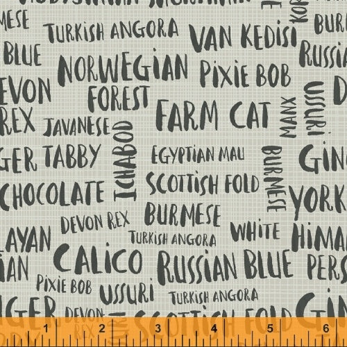 Hot Dogs and Cool Cats by Carolyn Gavin : Cat Names in Grey : Windham