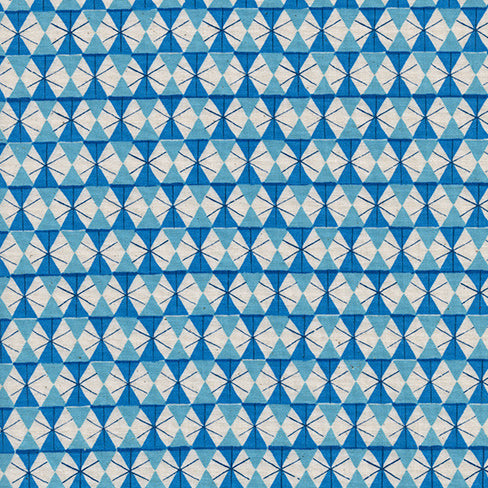 Welsummer by Kim Kight : Chicken Wire in Bright Blue : Cotton and Steel