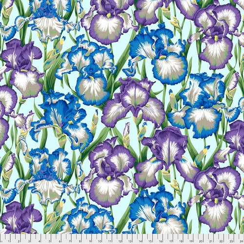 Philip Jacobs : Bearded Iris in Cool : Free Spirit