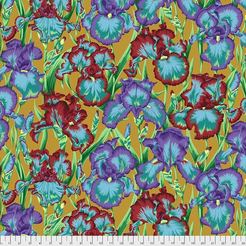Philip Jacobs : Bearded Iris in Ochre : Free Spirit