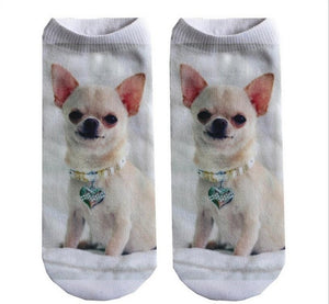New 3D Pet Socks for Everyone in the Family! - OMG I Really Want That