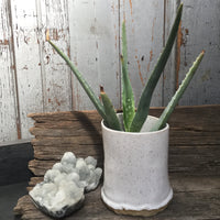 White Speckled Planter