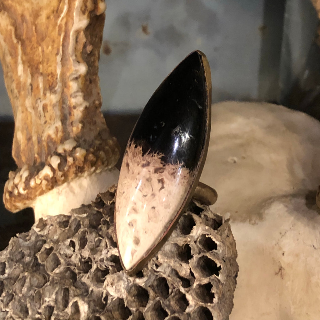 Petrified Palmroot Brass Ring