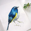 Bluebird Watercolor Paint Kit