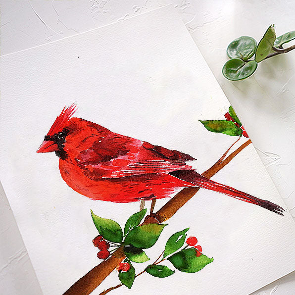 Cardinal Watercolor Kit