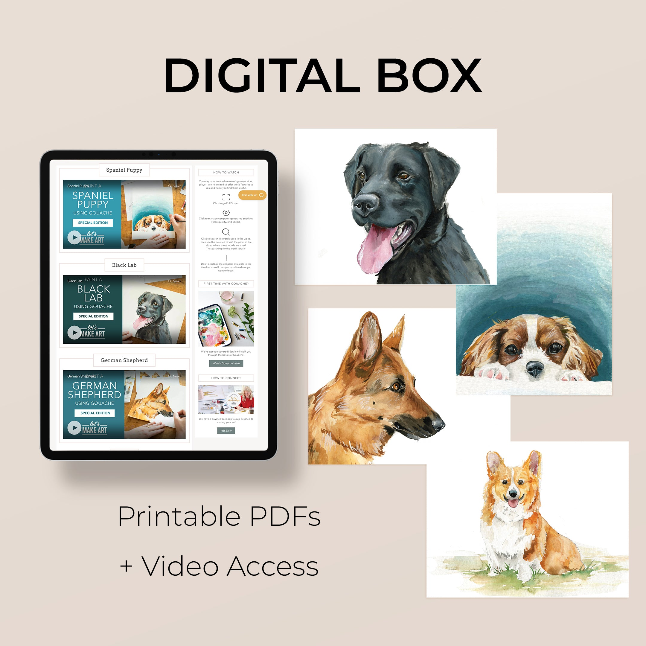 Digital Dog Gouache Box