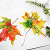Fall Leaves Watercolor Paint Kit