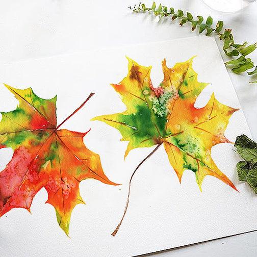 Fall Leaves Watercolor Kit