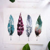 Feathers Watercolor Paint Kit