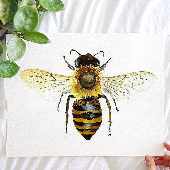 Honey Bee Watercolor Kit