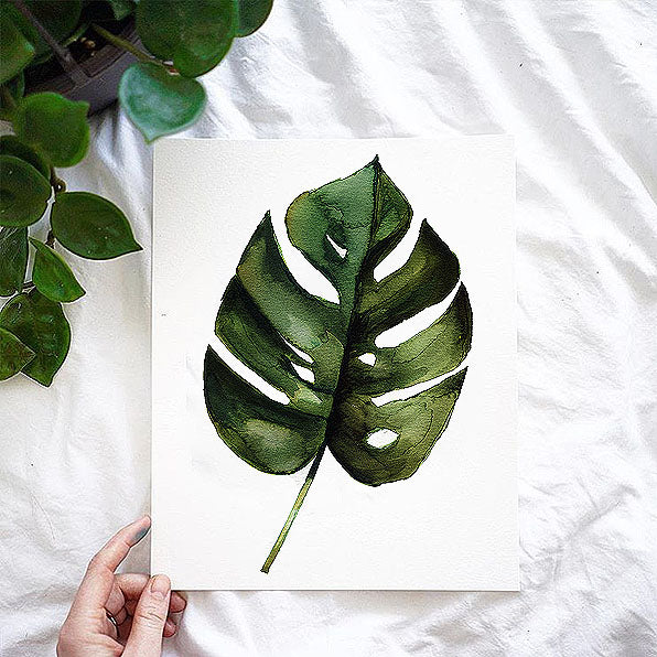 Monstera Leaf Watercolor Kit