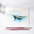 Narwhal Watercolor Kit