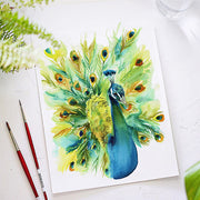 Peacock Watercolor Kit