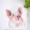 Piggy Pig Watercolor Paint Kit