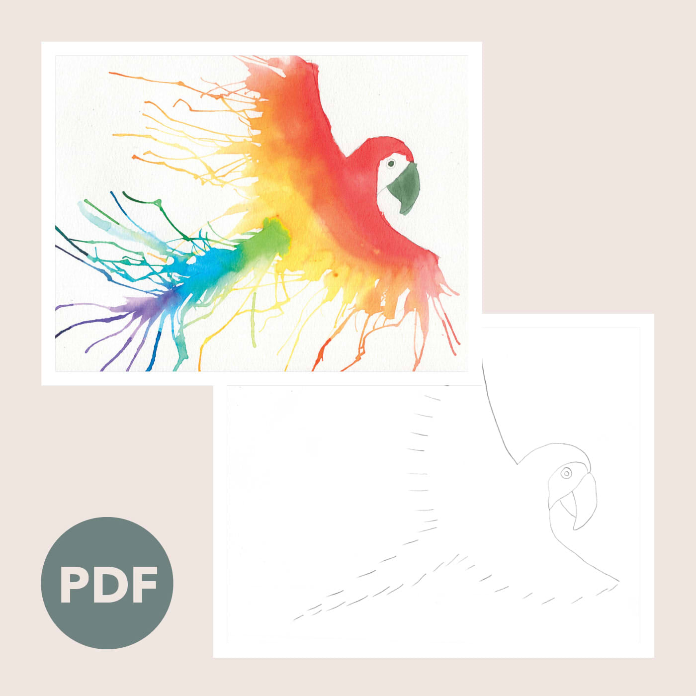 Rainbow Parrot Outline