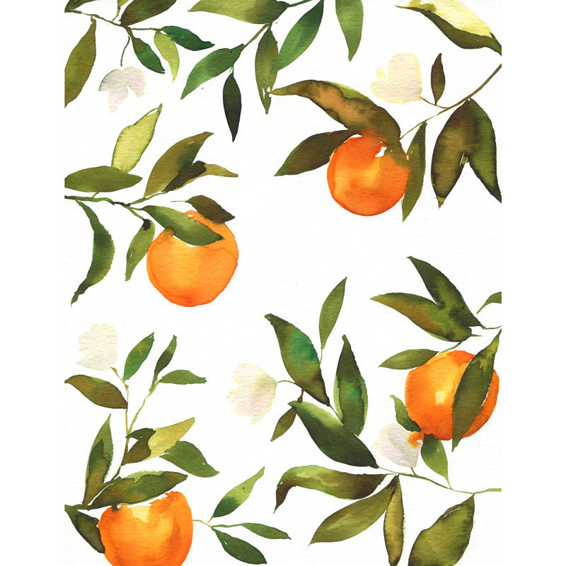 Orange Blossoms Watercolor Kit