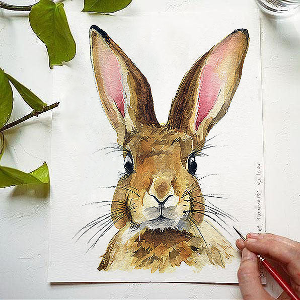 Rabbit Watercolor Kit