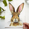 Rabbit Watercolor Paint Kit
