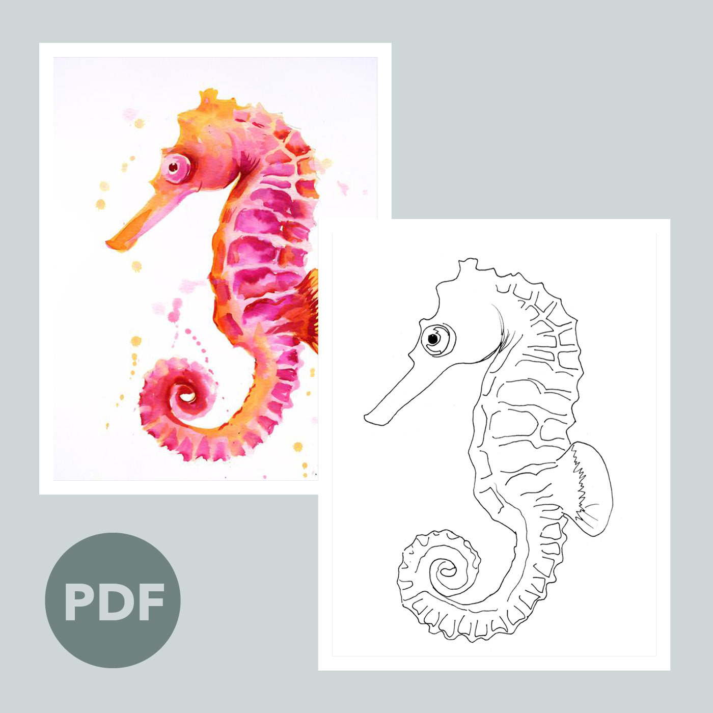 Seahorse Outline
