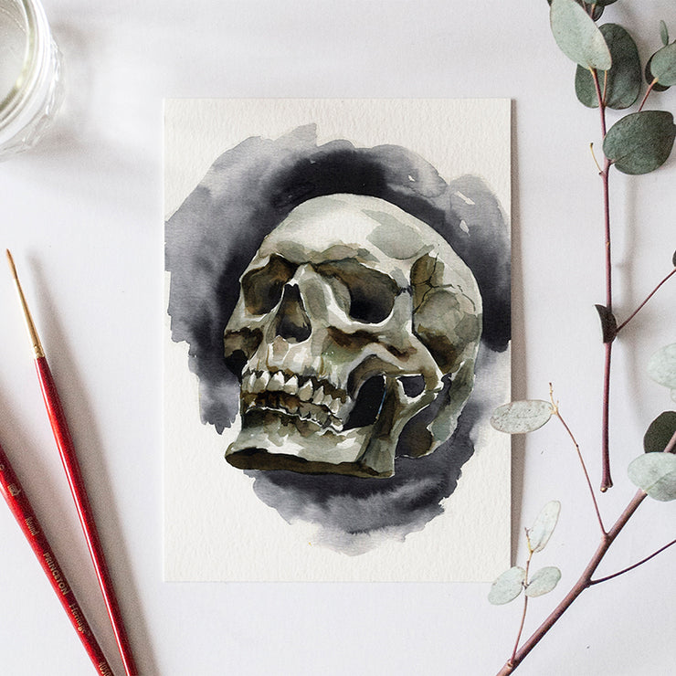 Skull Bonus Watercolor Kit