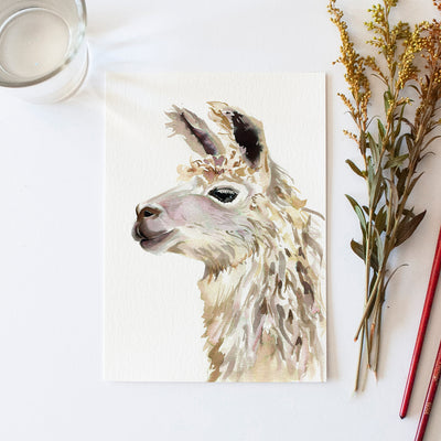 Llama Watercolor Kit