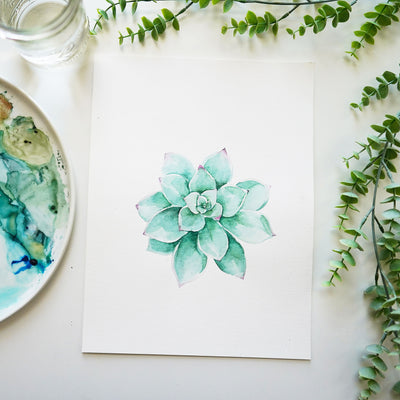 Succulent Watercolor Kit