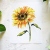 Sunflower Watercolor Paint Kit