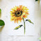 Sunflower Watercolor Kit