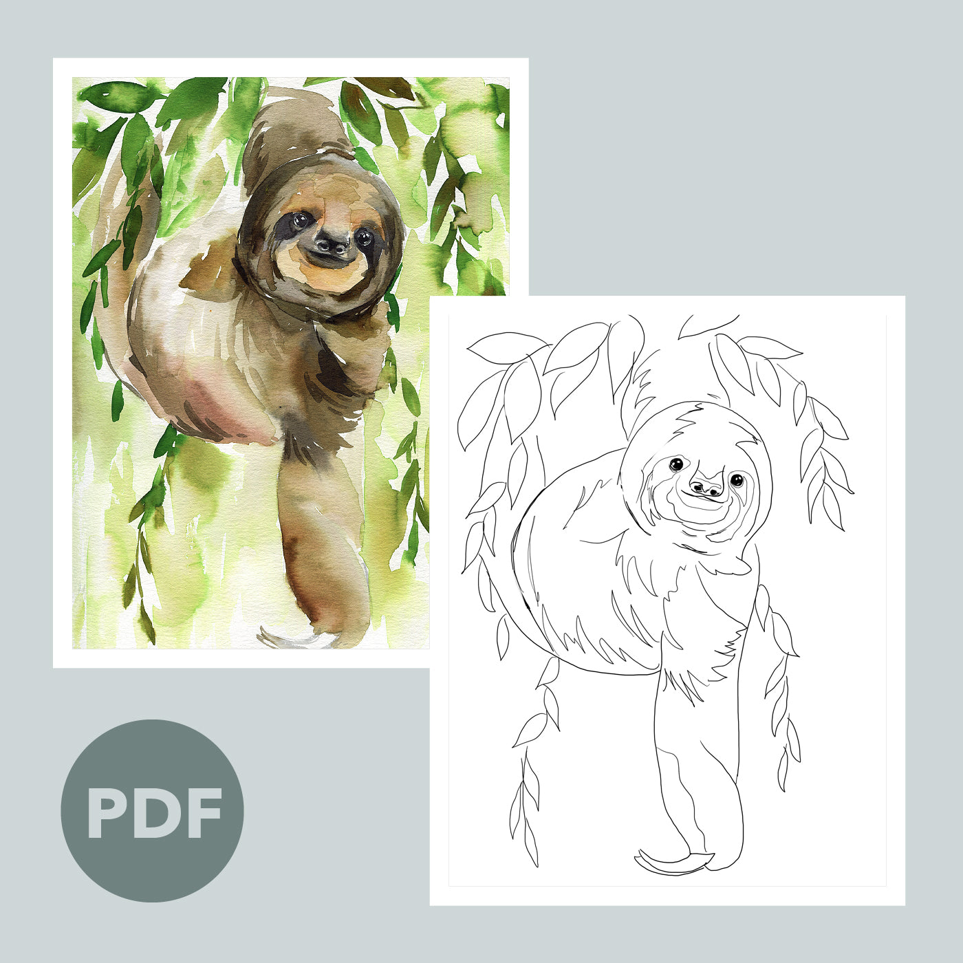 Sloth Outline