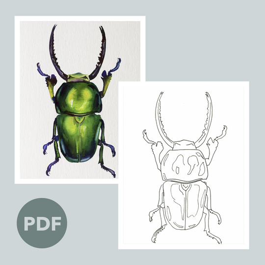 Beetle Outline