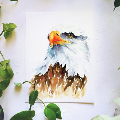 Bald Eagle Watercolor Kit