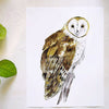 Barn Owl Watercolor kit