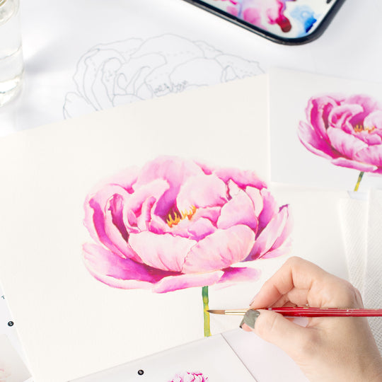 Peony Watercolor Kit