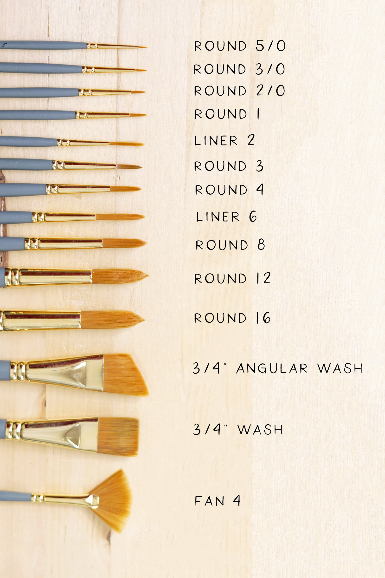 diagram showing the bristles of a variety of paintbrushes with text labeling which brush is which