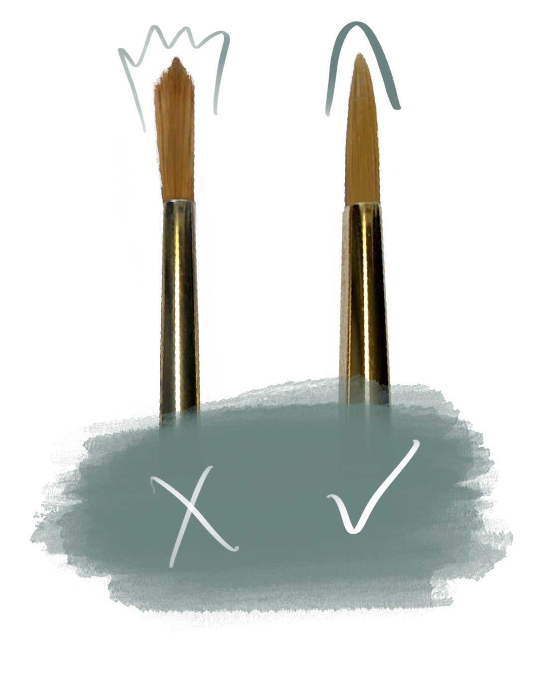 a diagram showing frayed bristles next to pointed bristles