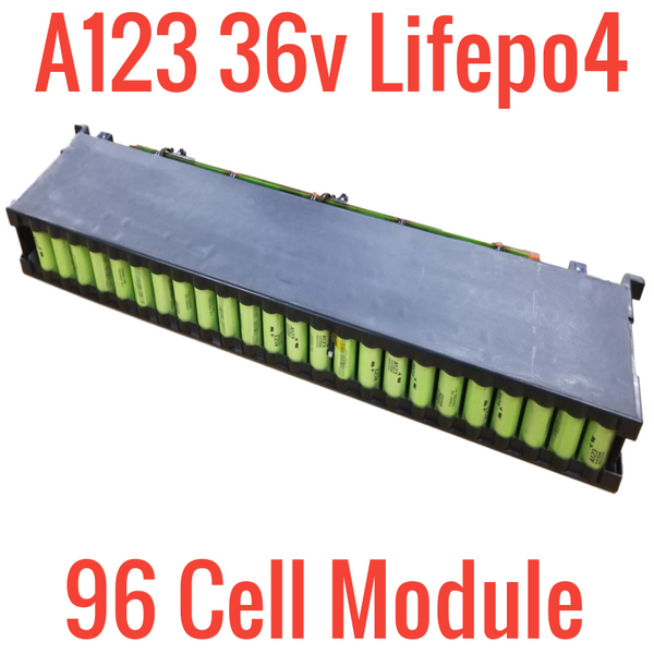 CASE with 2x 36v A123 LIFEPO4 736wh Modules - 192 M1B cells!