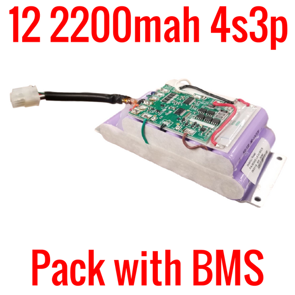 PACK WITH 12 MOLICEL 2200MAH LITHIUM ION