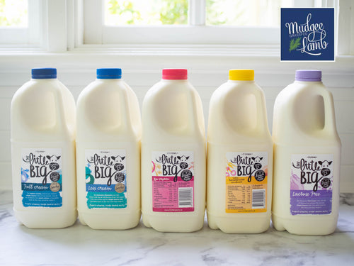 Little Big Dairy Co.