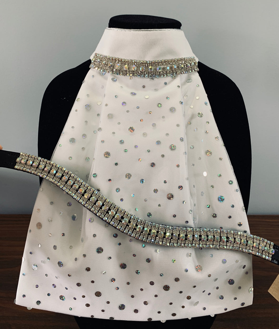 Set ~ Dots Clear crystal and iridescent browband with stock tie