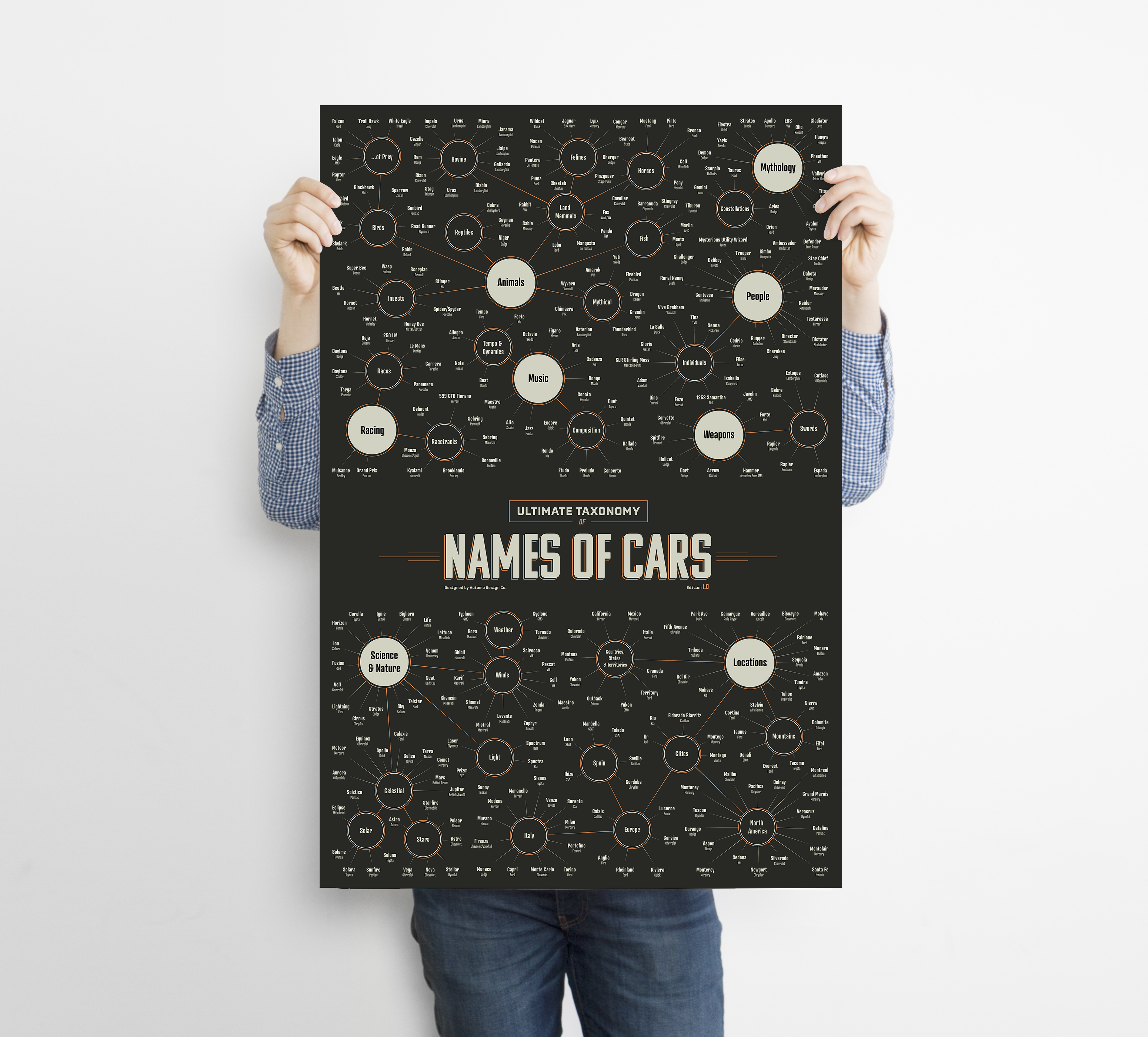 Taxonomy Of Car Model Names - Infographic Art Print - Framed - Automo