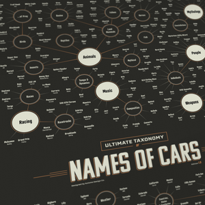 Taxonomy Of Car Model Names - Infographic Art Print -  Art Print - Automo Design Co.