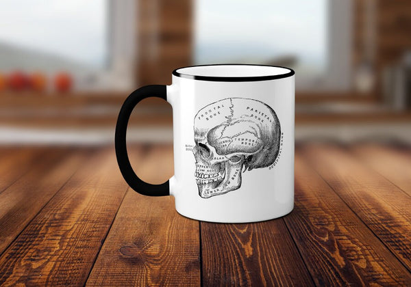 Anatomy Mug, Anatomical Skull Coffee Mug, Vintage Medical Illustration Coffee Cup, Horror, Sublimated 11 oz, Colored Handle & Rim