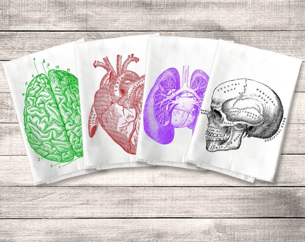 Anatomy Towel Flour Sack Towel, Halloween, Kitchen Towel Set, Heart Skull Brain Lungs, Tea or Dish Towel, Anatomical, Horror Decor, Macabre