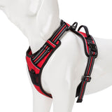 Front Range No-Pull Reflective Comfort Control Dog Harness/Safety Vest