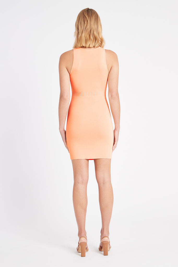 Malone Mini Dress