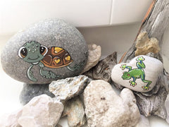 painted rocks flowers butterfly bird happy home decorations