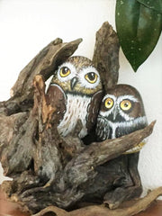 painted rocks owls home decorations by artist Lidia Zingerle