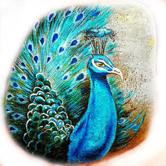 peacock painted rock artist of the month Tunde Fodor